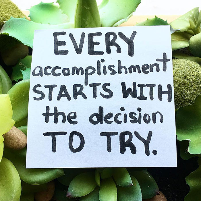 decision to try diet quote