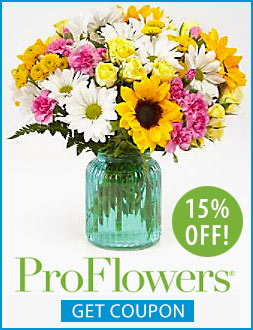 proflowers banner coupon