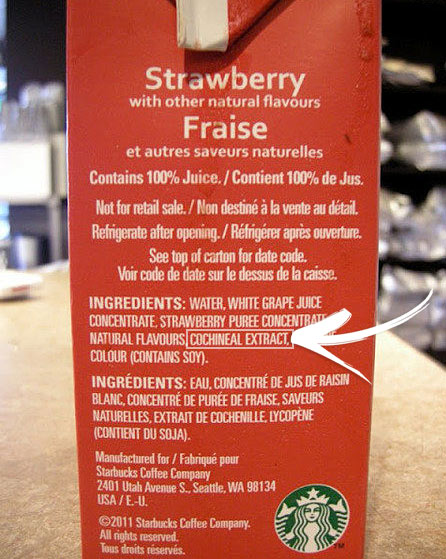 starbucks cochineal ingredient